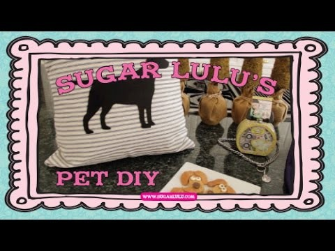 Sugar Lulu's Pet DIY