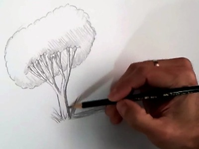 Teaching children to draw a realistic tree step by step | how to draw a tree pencil technique