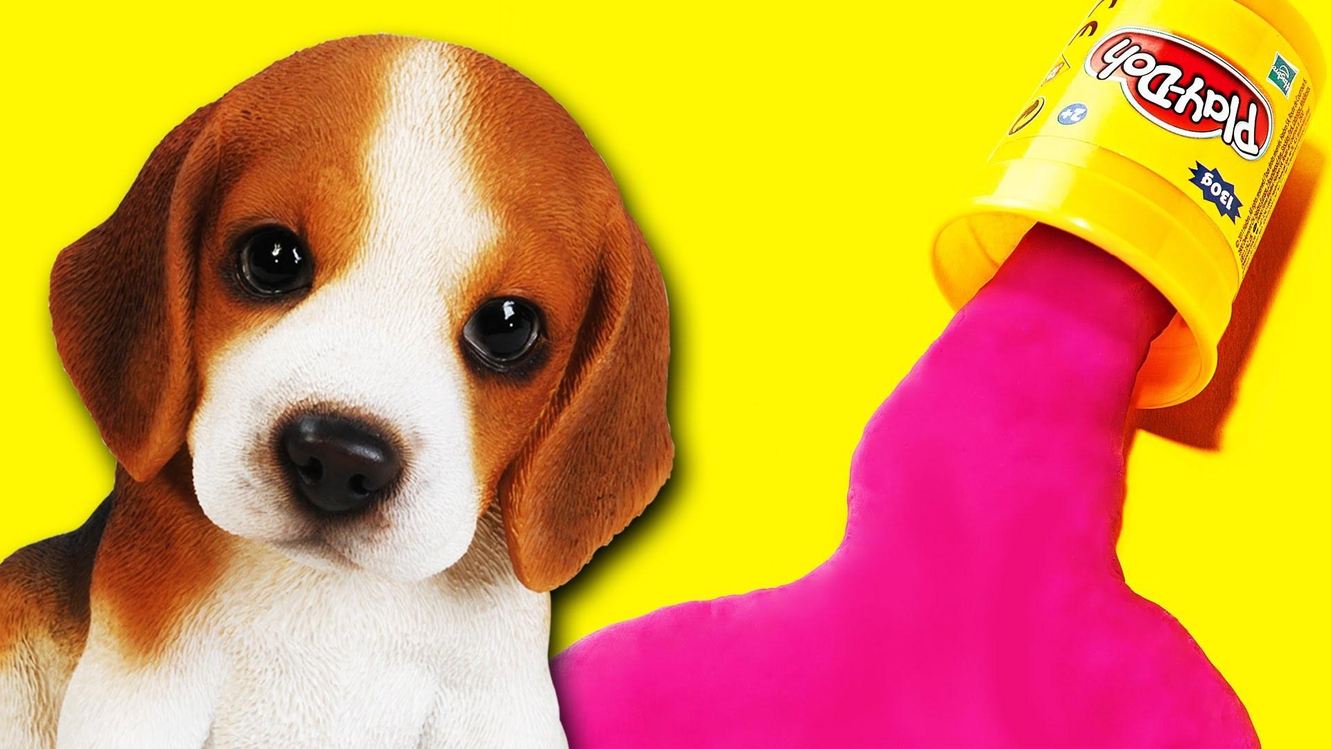 Play Doh animals figures playset - How to make playdough cat & dog