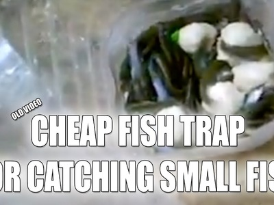 A Cheap Fish Trap (DIY) For catching fish in the wild