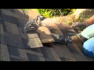 ROOF REPAIR - How to replace roofing shingles