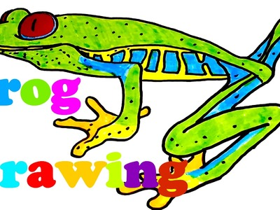 DIY How to draw easy stuff.things but cool on paper: draw a realistic FROG easy, SPEED ART