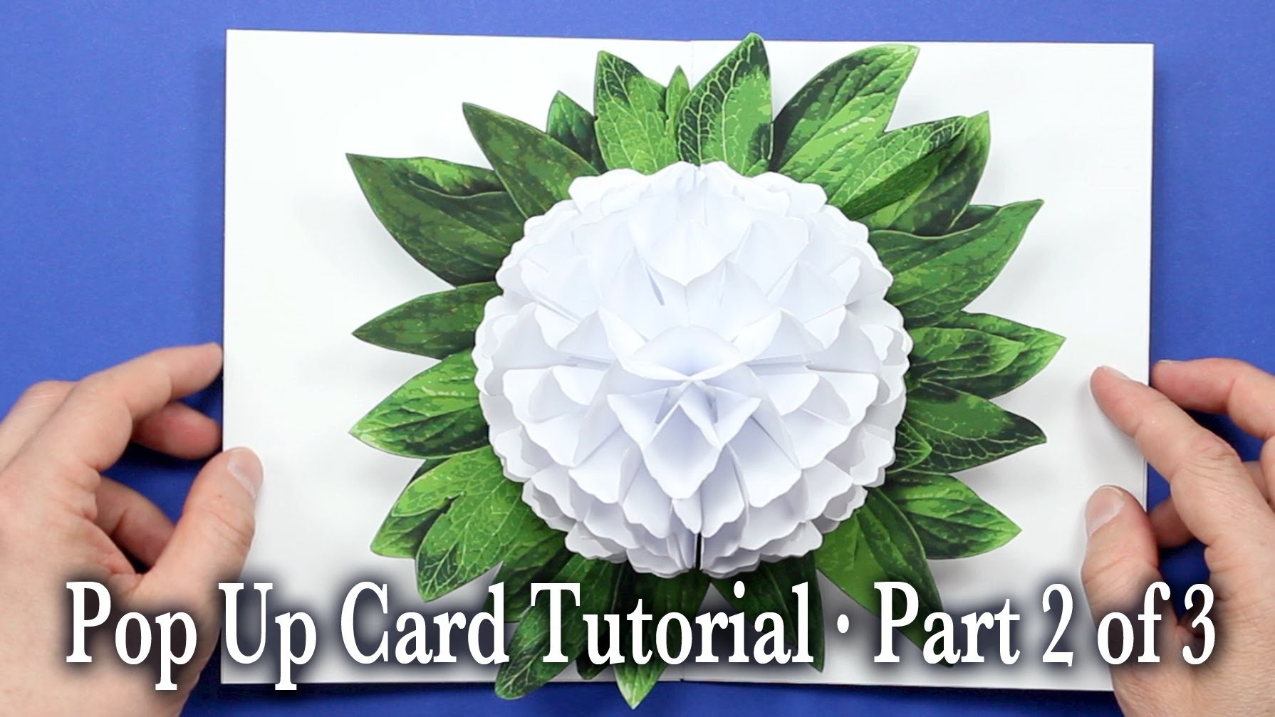 Flower Pop Up Card Tutorial Part 2 of 3