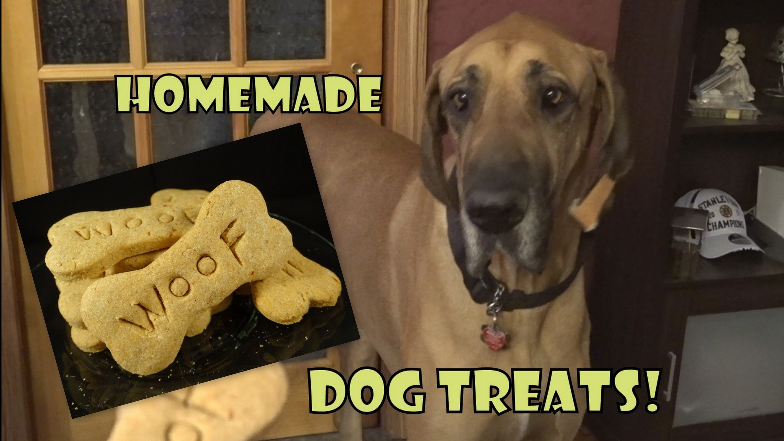 Homemade Dog Treats- with yoyomax12