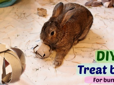 DIY treat ball for bunnies