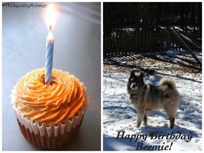How to make a Cake For Your Birthday Dog - 4 All Natural Ingredients Recipe