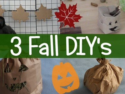 3 Fall DIYs! - DIY Small Pet Toys