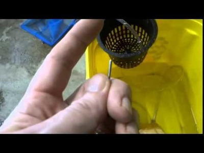DIY Airlift Pumps Low & High Volume Aquaponics Hydroponics
