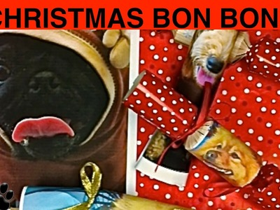 CHRISTMAS CRACKERS - DOG XMAS BON BONS - DIY Dog Food by Cooking For Dogs