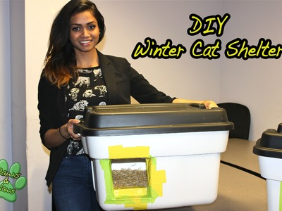 DIY: How to build your own Winter Cat Shelter!