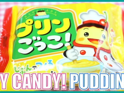 DIY CANDY! Custard Pudding