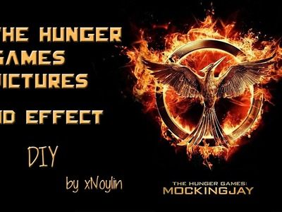 DIY The Hunger Games | Pictures 3D Effect | Mockingjay
