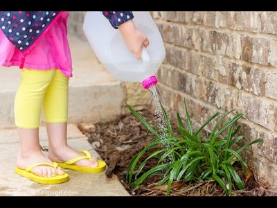 DIY: Make a Watering Can from an old Milk Jug (. perfect for kids!)