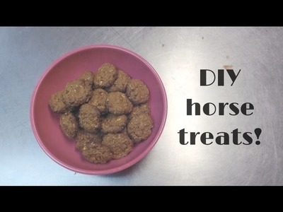 DIY Horse Treats!