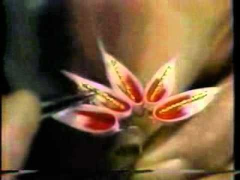 Hana Kanzashi - Silk Japanese Flowers - 03