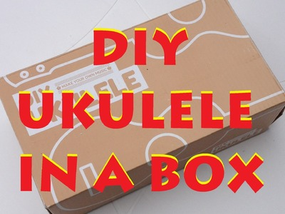 DIY UKULELE IN A BOX REVIEW, urban outfitters kit home built