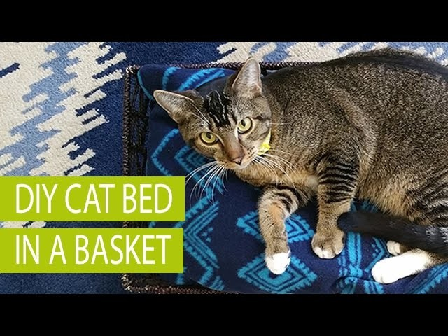 DIY Cat Bed in a Basket #MyCatMyMuse