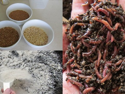 Boost compost worm growth using DIY dry food, more worms mean more poop :)