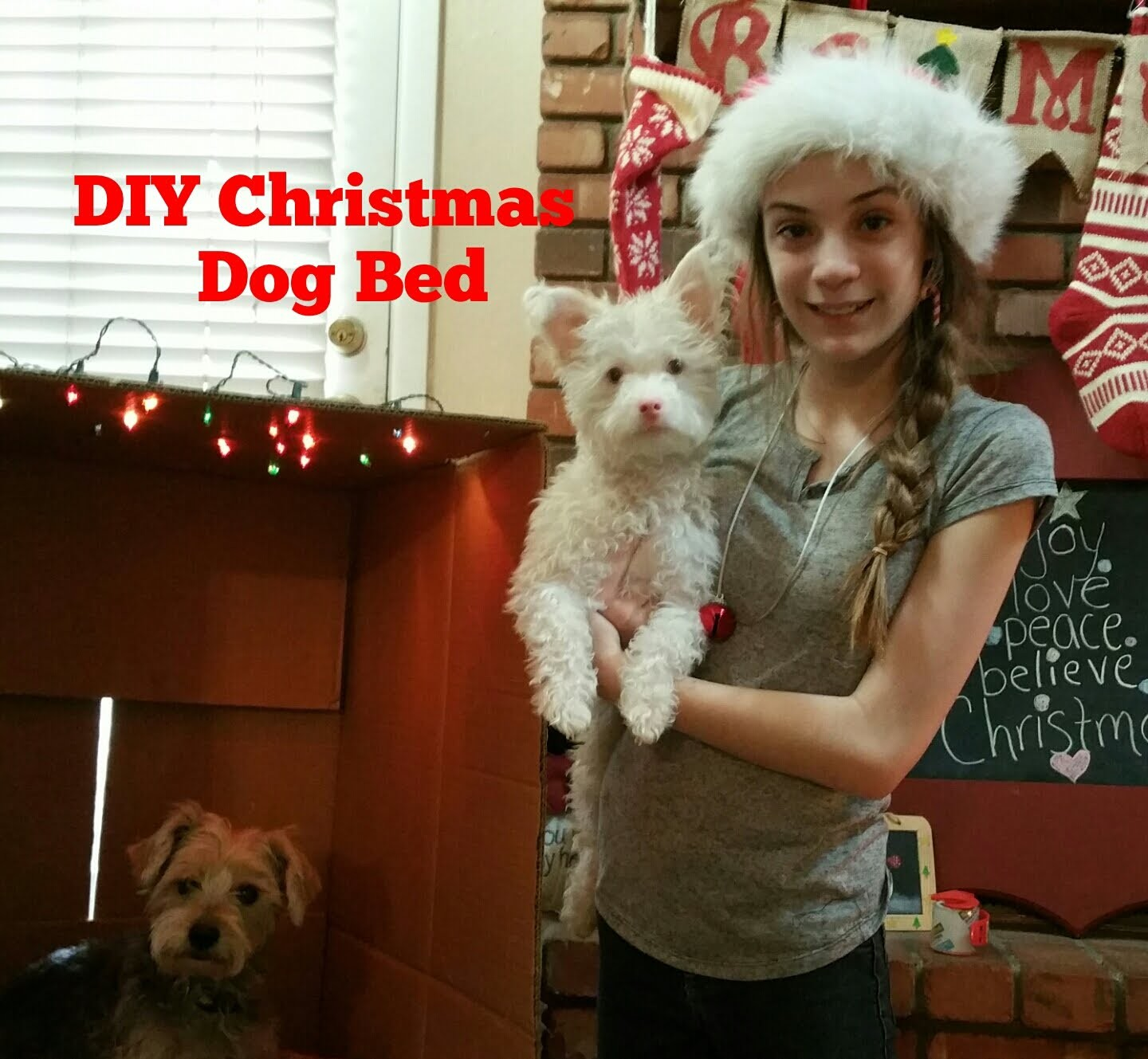 DIY Christmas Dog Bed!