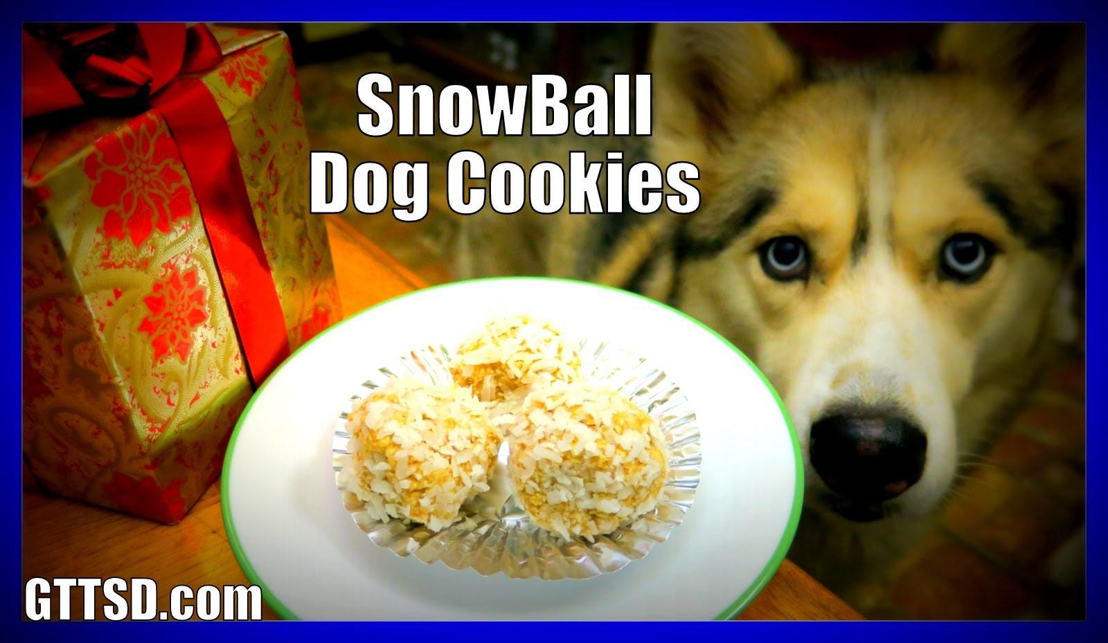 DIY SNOWBALL DOG COOKIES | Snow Dogs Snacks 40 | No Bake Dog Treats for Christmas