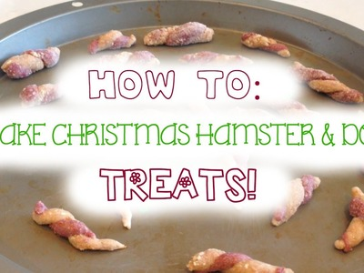 DIY Christmas Hamster & Dog Treats!