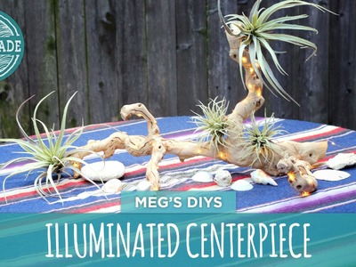 Illuminated Driftwood Centerpiece- HGTV Handmade