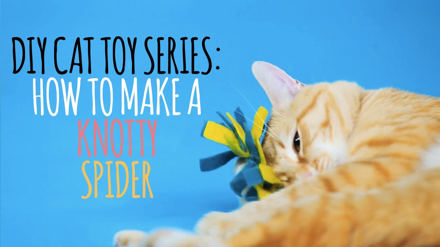 DIY Cat Toys - How to Make a Knotty Spider