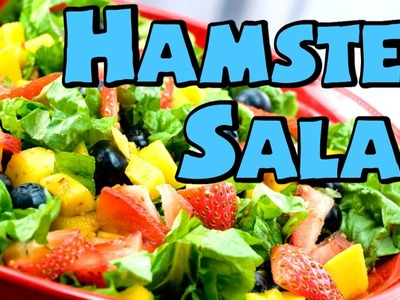 HOW TO: HAMSTER SALAD ~ Suitable for all Hamsters *HD*