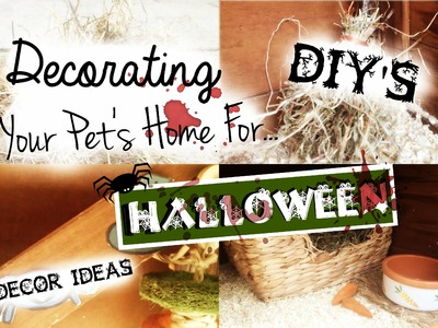 Decorating Your Pet's Home For Halloween: DIY'S & DECOR IDEAS! | RosieBunneh
