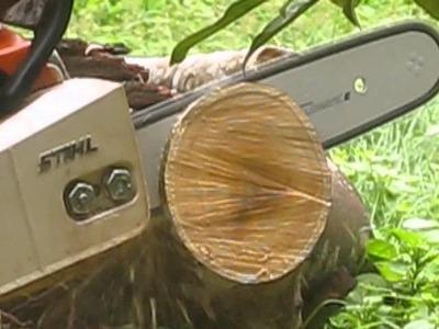 Stihl MS 180 Cutting Indian Jack wood using Stihl PM3 and the newer Stihl PS3 Saw chains