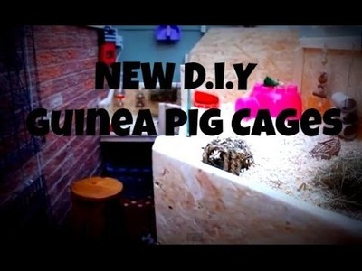 Homemade Guinea Pig Cages *D.I.Y - 2014*