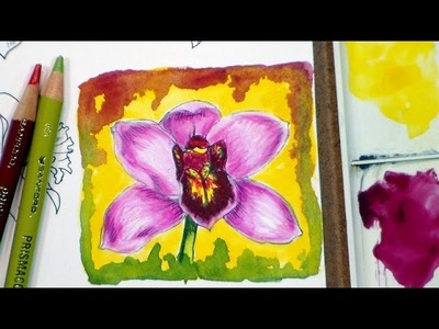 How to color an orchid flower in colored pencils and watercolor