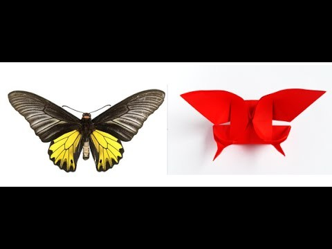 Origami Butterfly Part 1 - Origami butterfly instructions