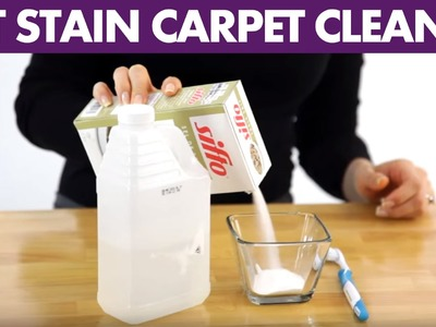 Pet Stain Carpet Cleaner - Day 3 - 31 Days of DIY Cleaners (Clean My Space)