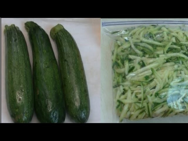 How to Freeze Zucchini No Blanching ~ Noreen's Garden