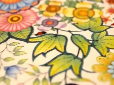 Secret Garden Coloring Book | My leaves and flowers | Jardim Secreto