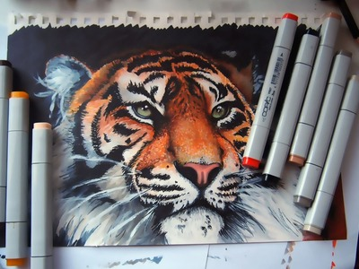Tiger - copic markers time lapse