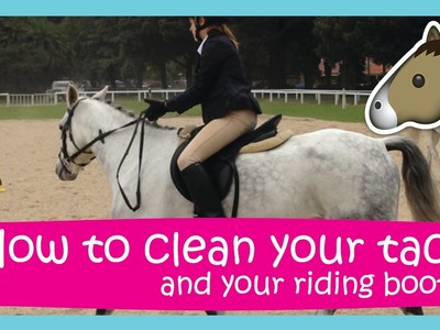 How to clean your tack | Easy & Affordable!