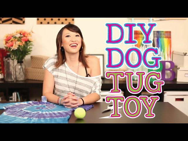DIY Dog Tug Toy - Pinbusters Episode 22