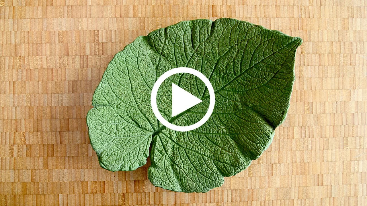 ShapeCrete :: Decorative Leaf