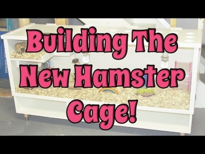 BudgetBunny: Building The New DIY Bb Hamster Cage!