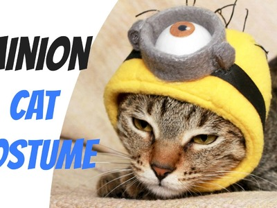 Funny Cat Minion Costume | DIY Pet Costume Tutorial  - 2 Cats & 1 Doll