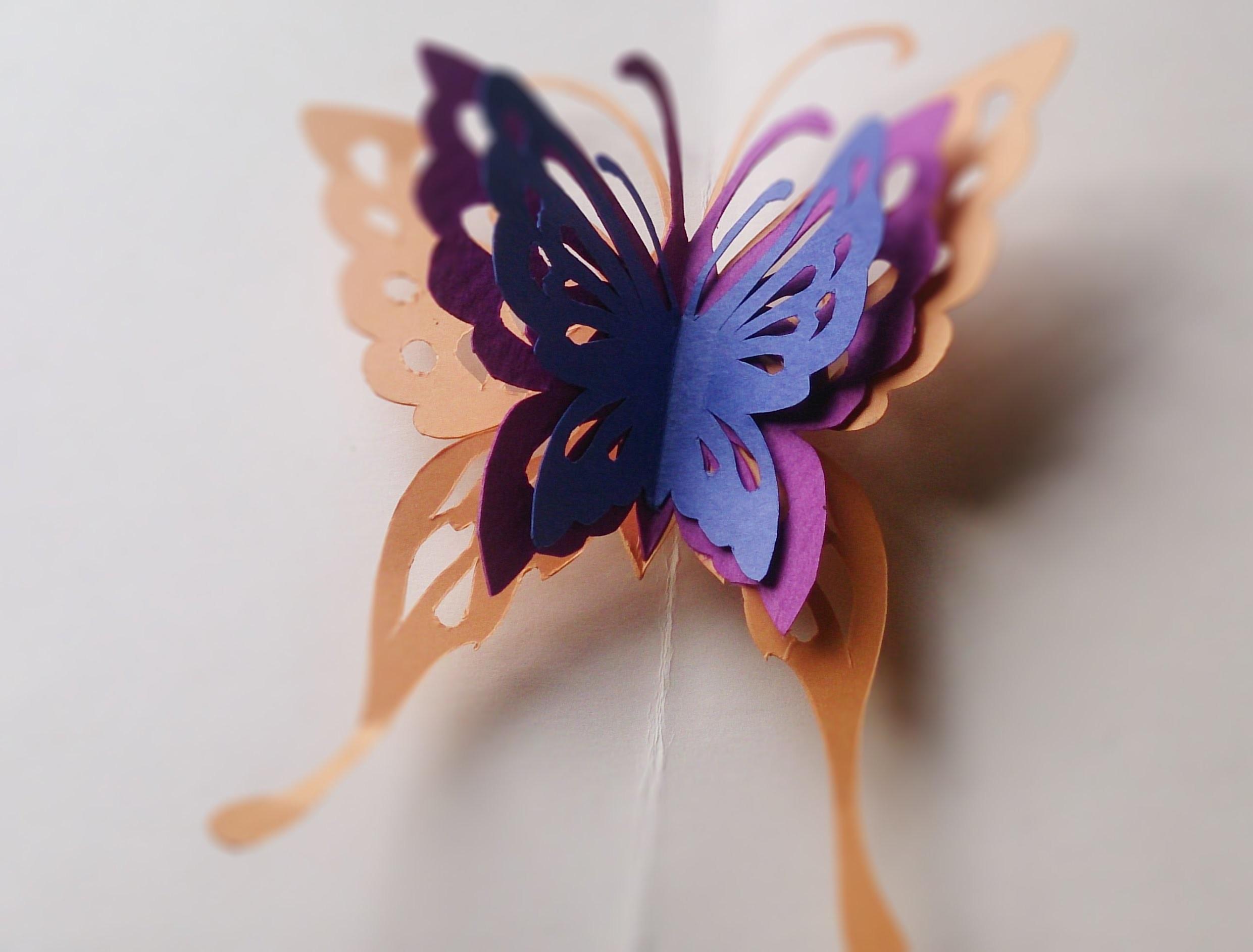 How to make butterfly pop up card - Hướng dẫn làm thiệp