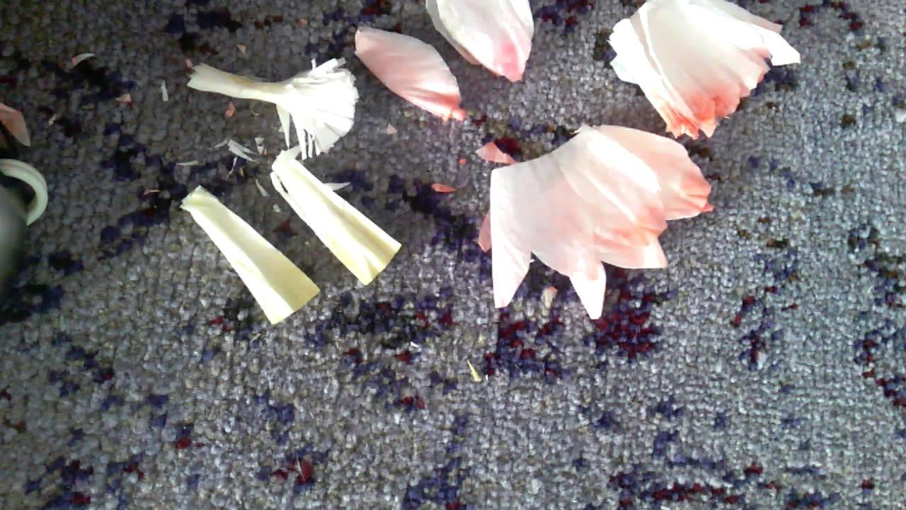 Handmade DIY Coffee Filter Flowers