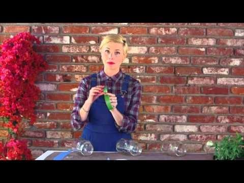 Leah Ashley's DIY Herb Wall Garden