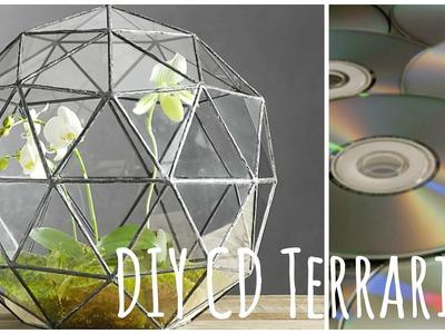 DIY Build your own CD Terrarium- BlueSparkles☆