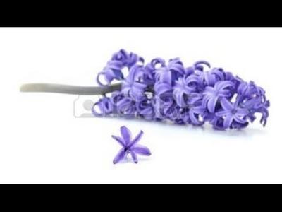 How to make tissue paper flower - Violet handmade paper flowers