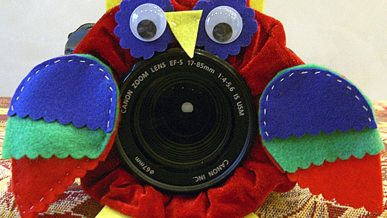 Make a Cute Owl Camera Accessory - DIY Technology - Guidecentral