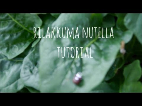 Rilakkuma nutella tutorial (polymer clay)
