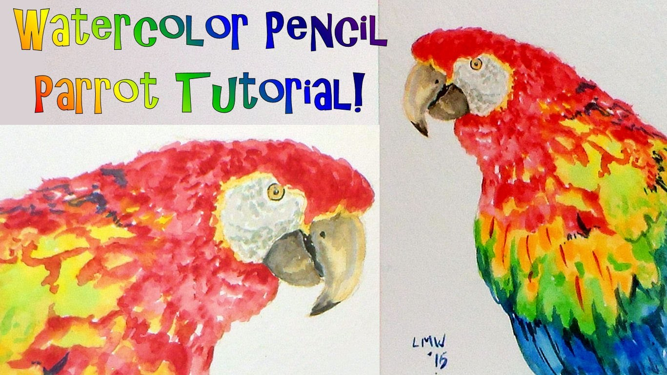 Parrot (or Macaw?) REAL TIME How to Paint and Draw Tutorial with Watercolor Pencils